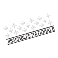 Assemblee Nationale  preview
