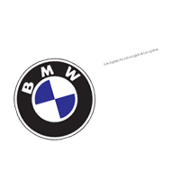BMW color vector