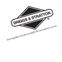 BRIGGS & STRATTO preview