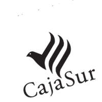 CAJASUR preview