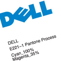 DELL  preview