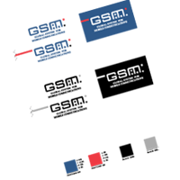 GSM Global system vector
