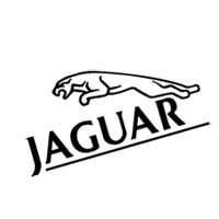 Jaguar  preview