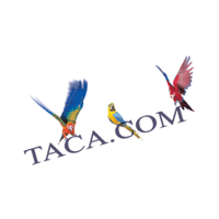 TACA Air Lines preview