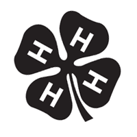 4-H 41 preview