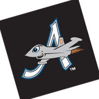 Aberdeen IronBirds 303 vector