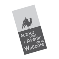 Acteur pour l'Avenir de la Wallone preview