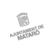 Ajuntament De Mataro preview