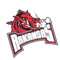 Arkansas Razorback 422 vector