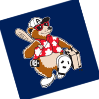 Asheville Tourists 36 vector