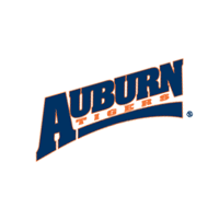 Auburn Tigers 248 download