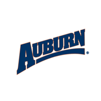Auburn Tigers 249 download