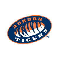 Auburn Tigers 251 preview