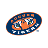Auburn Tigers 253 preview