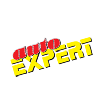 Auto Expert preview