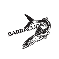 Barracuda 175 download