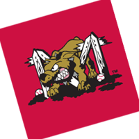 Batavia Muckdogs 211 preview