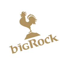Big Rock 215 vector