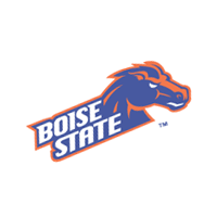 Boise State Broncos 28 vector