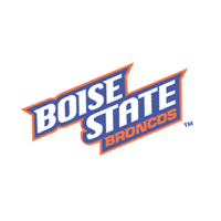 Boise State Broncos 29 vector