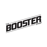 Booster vector