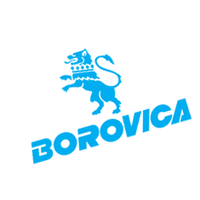 Borovica preview