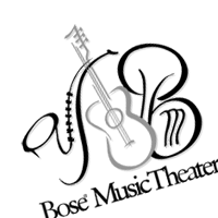 Bose Music theater vector