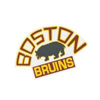 Boston Bruins 100 preview