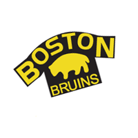 Boston Bruins 93 preview