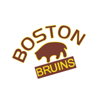 Boston Bruins 95 vector