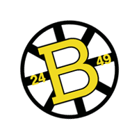 Boston Bruins 99 preview