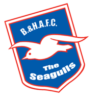 Brighton Hove AFC preview