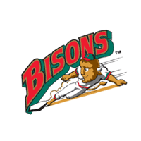 Buffalo Bisons 360 vector