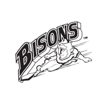Buffalo Bisons preview