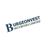 Burgeonvest Securities Limited preview
