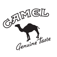Camel preview