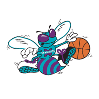 Charlotte Hornets preview