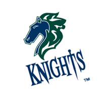 Charlotte Knights 224 vector