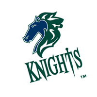 Charlotte Knights 225 vector