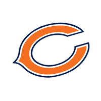 Chicago Bears 293 vector