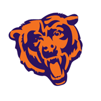 Chicago Bears 295 vector