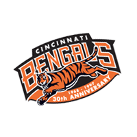 Cinncinati Bengals 66 preview