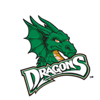 Dayton Dragons vector