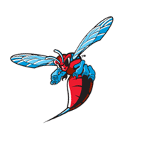 Delaware State Hornets 186 download