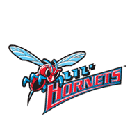 Delaware State Hornets 193 download