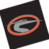 Delmarva Shorebirds 200 vector