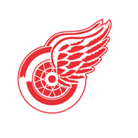 Detroit Red Wings 298 vector