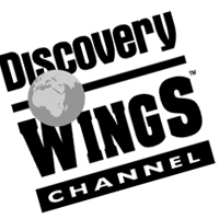 Discovery Wings vector