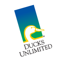 Ducks Unlimited 163 vector
