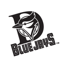 Dunedin Blue Jays 171 vector
